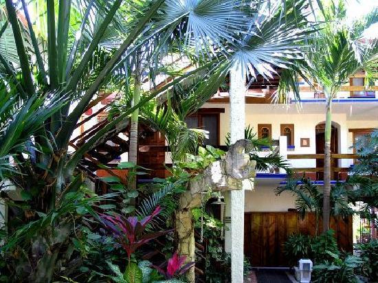 Eco-Hotel El Rey Del Caribe: Aussicht vom Pool auf die Zimmer