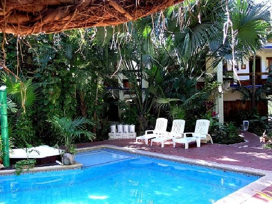 Eco-Hotel El Rey Del Caribe: Pool