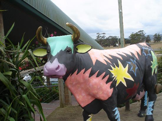 Mercure Launceston: Painted cow at the cheese factory