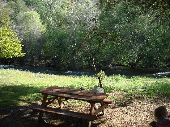 Sequoia RV Ranch: View from our RV