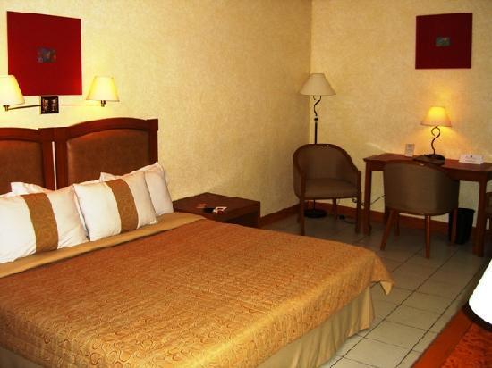 Executive Hotel: 室内