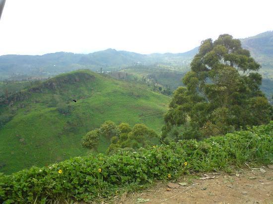 Nuwara Eliya, Sri Lanka: View on the way up to the hill