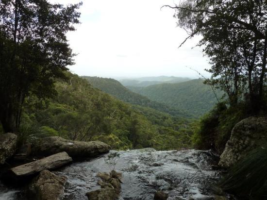 Springbrook Photo