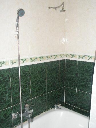Golden Hotel: Bath and shower