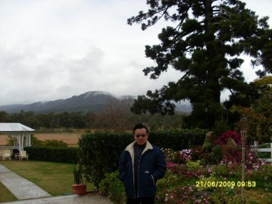 Tamborine Mountain, Australia: Albert Wines & Vineyard