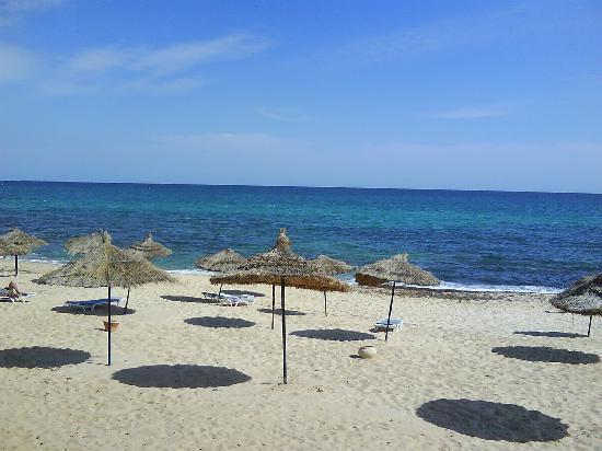 Happy Days Sultan Beach: la plage du sultan beach