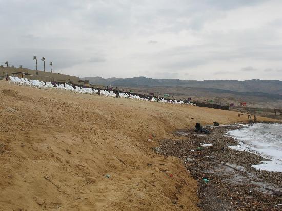 Holiday Inn Resort Dead Sea: The beach, and the debris