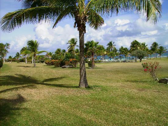 Gentle Winds Condominiums: Area above beach