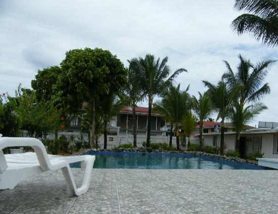 Swan's Cay Hotel: view of the pool from the terrace