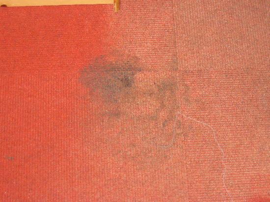 Gasthof Bergheimat: Teppichflecken extrem