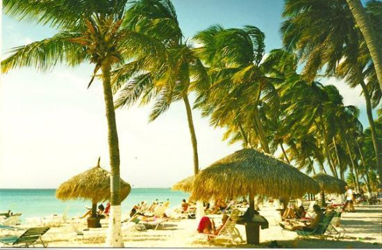 Eagle Beach: Aruba breeze