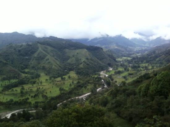 Valle del Cocora, Mirador Salento, Colombia