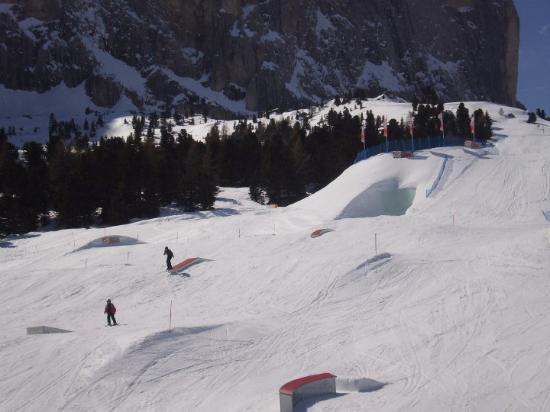 Selva di Val Gardena Picture