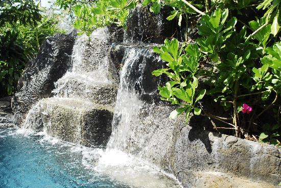 Manoa Valley Inn: Lava rock waterfall which flows into the pool just behind the house