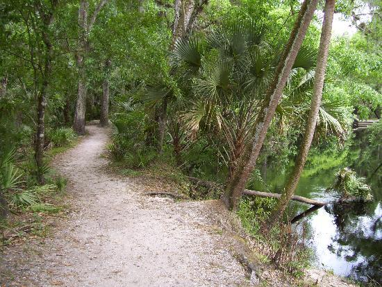 Thonotosassa, Flórida: Trail next to the river