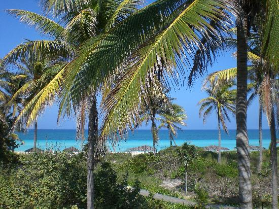 TRYP Cayo Coco: The stunning view from our room