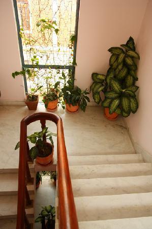 Sacred Valley Inn Pokhara: staircase