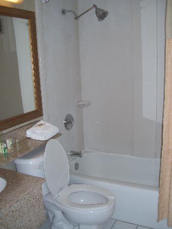 Holiday Inn Burlington : bathroom