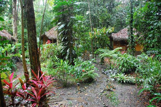 Korrigan Lodge: Bungalows in the tropical garden