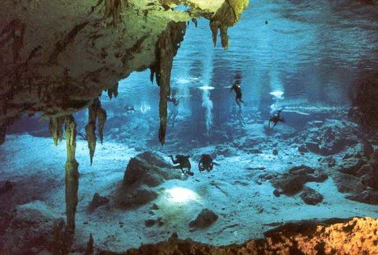Solo Buceo Dive Shop : En cenote