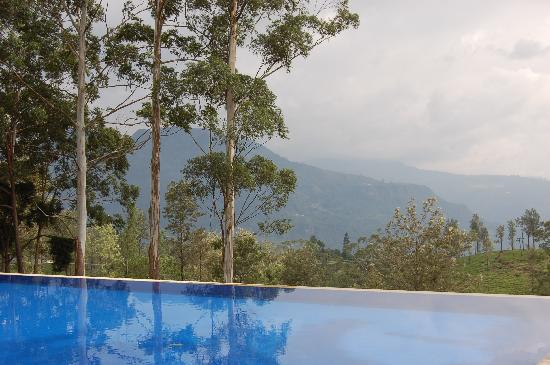 The Lavender House: swimming pool and view to the hills