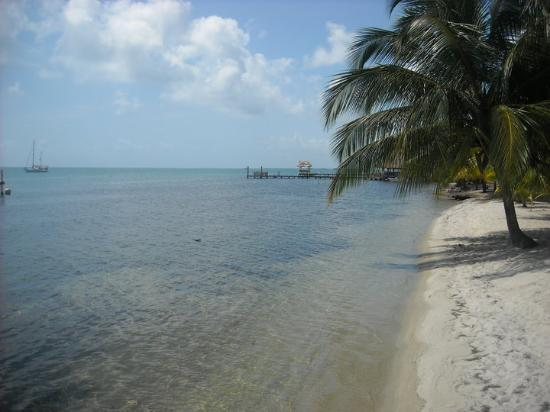 Placencia, Belize: Beach near Dianni's Guest House