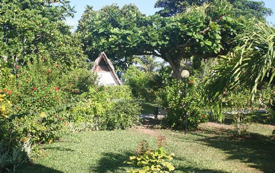 La Digue Island Lodge: Les jardins au naturel