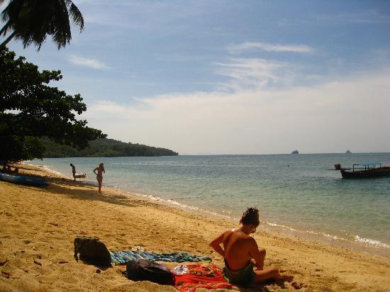 Pine Bungalow: The beach v.2