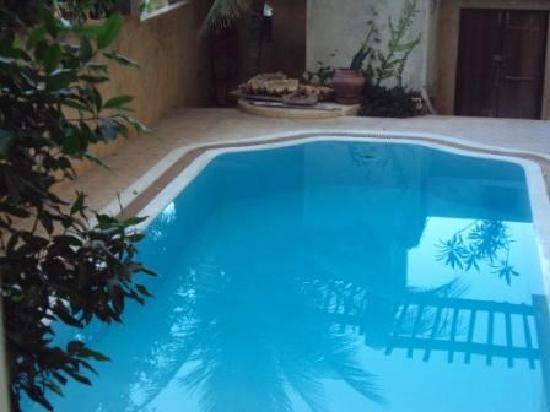 Lamu Island, Kenya: msafini pool