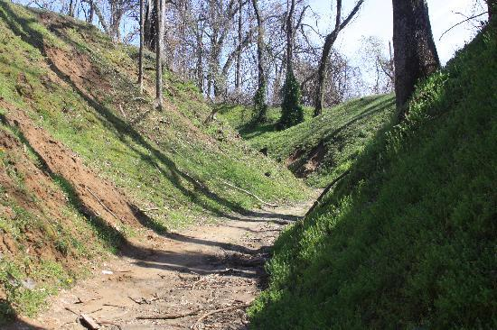 Civil War Trench Picture Of Columbus Belmont State Park