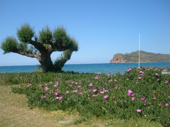 Porto Platanias Beach Resort & Spa : på väg till Agia Marina