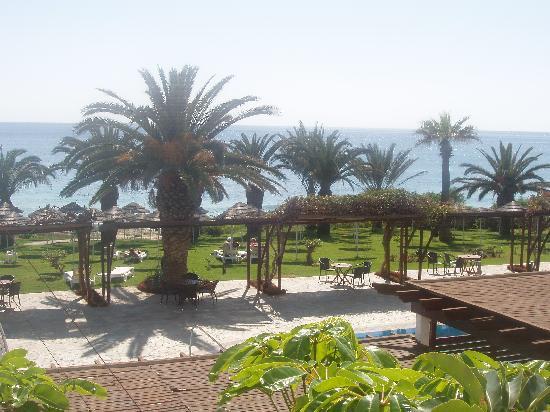Alion Beach Hotel: Hotel garden