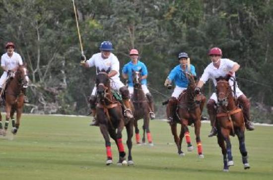 El Rey Polo Club