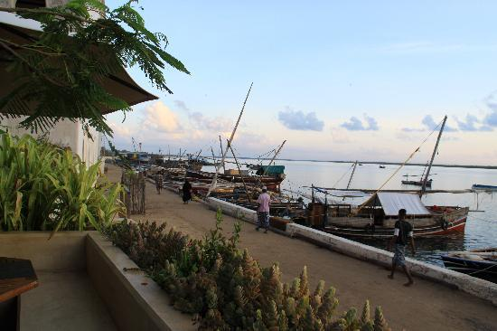 Lamu Island, Kenya: view from Lamu House restaurant