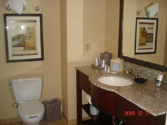 Hampton Inn & Suites Tahoe-Truckee: bathroom
