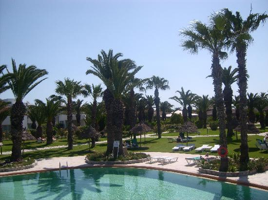 SENTIDO Phenicia: View from the bar looking down on the pool