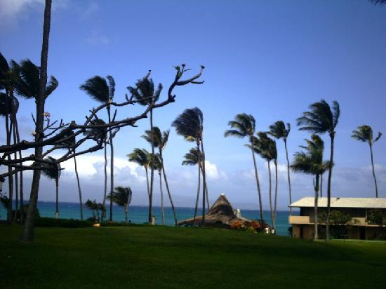 Napili Shores Maui by Outrigger: View from our room
