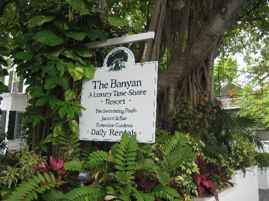 delaney house picture of the banyan resort key west. Black Bedroom Furniture Sets. Home Design Ideas