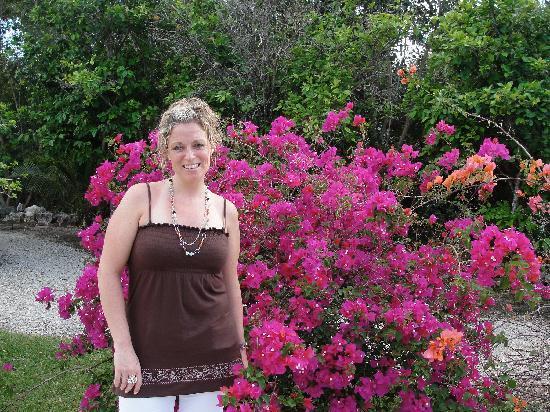 Sensimar Seaside Suites & Spa: superbe végétation sur le site