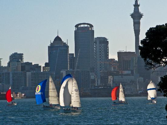 Admirals Landing Bed & Breakfast: Sailboat race and Auckland