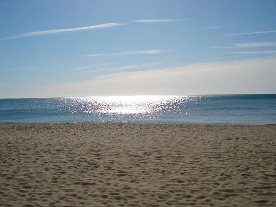 Hotel Monarque Fuengirola Park : Playa de Fuengirola