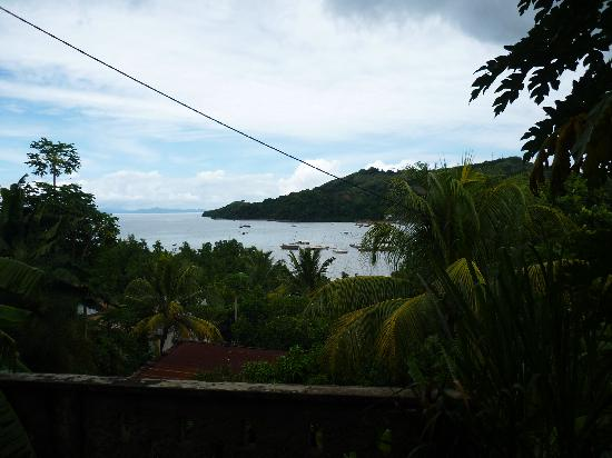 La Plantation : The view from the terrace