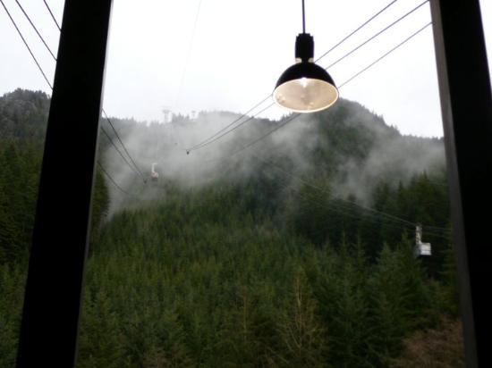 Grouse Mountain Photo