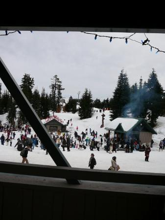 Foto de Grouse Mountain