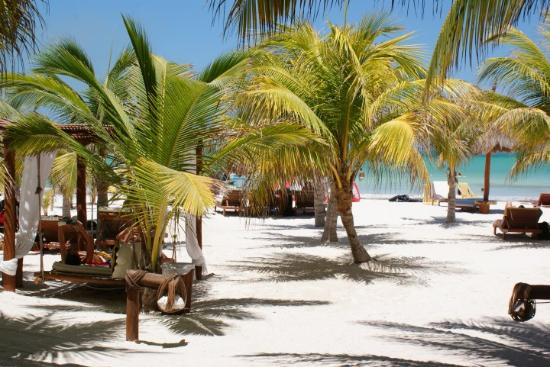 Holbox Hotel Casa las Tortugas - Petit Beach Hotel & Spa: Playa de casa tortugas.....