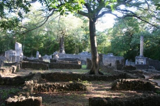 Watamu, Kenya: Rovine dic Gede