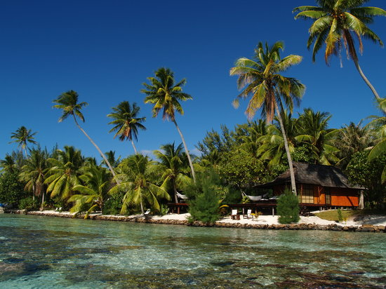 Vahine Private Island Resort: Beach Bungalows & coral garden