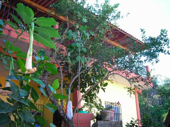 Casa Irma y Angel: Casas Irma Y Angel Yelapa