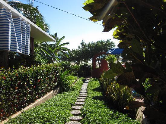 Casa Delfin Sonriente: Pathway to beachfront