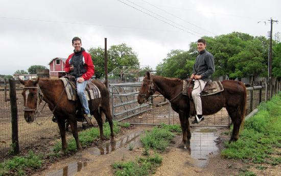 The Farmyard: First time on a horse - a great experience